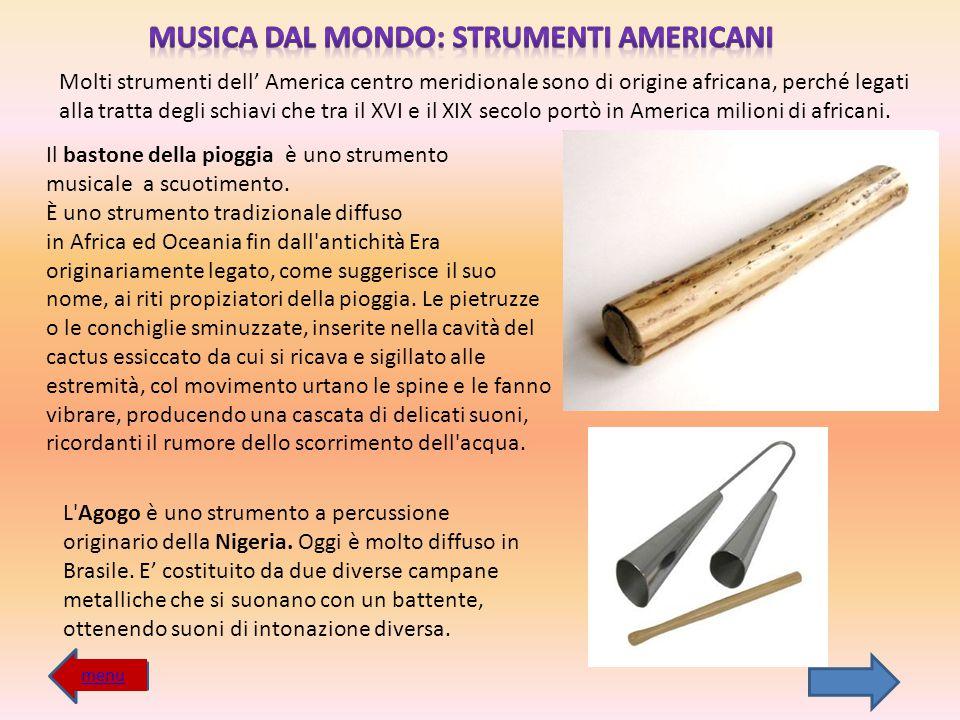 MUSICA DAL MONDO: STRUMENTI AMERICANI