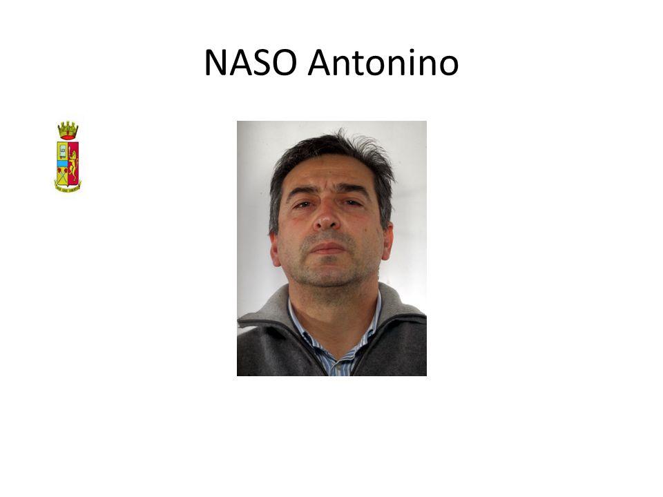 NASO Antonino