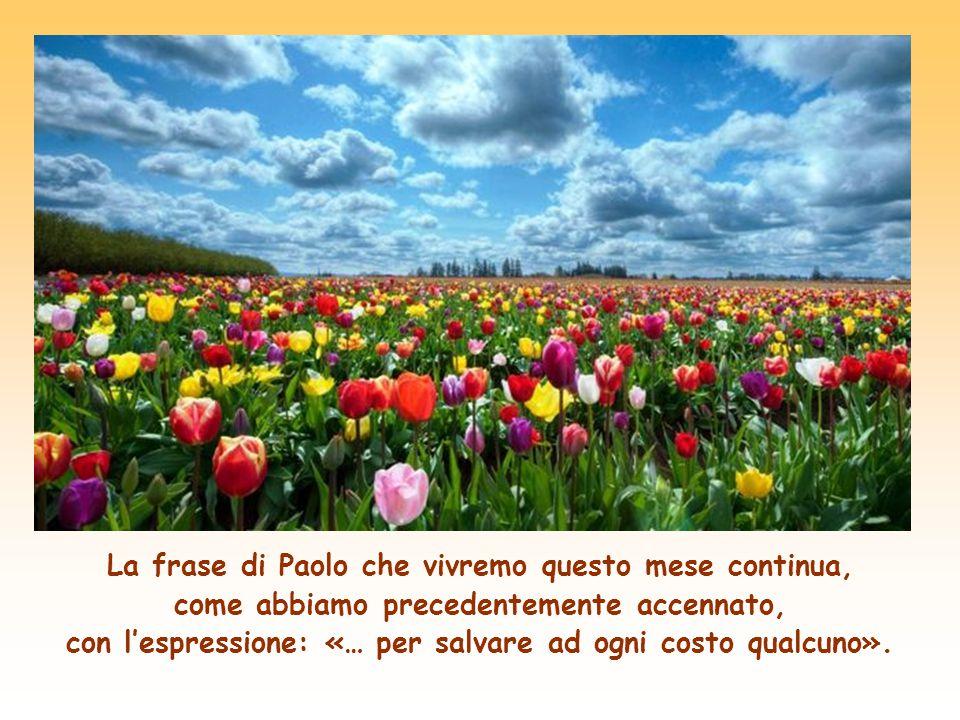La frase di Paolo che vivremo questo mese continua, come abbiamo precedentemente accennato, con l'espressione: «… per salvare ad ogni costo qualcuno».