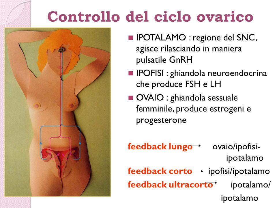 Controllo del ciclo ovarico