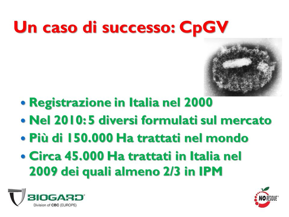 Un caso di successo: CpGV