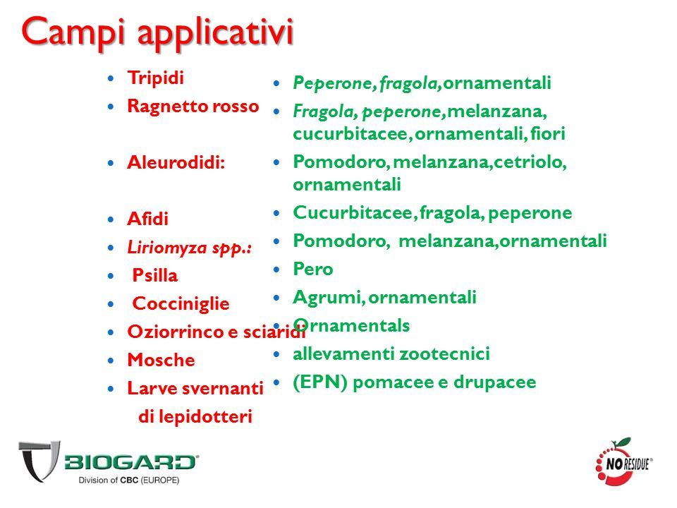 Campi applicativi Tripidi Ragnetto rosso Aleurodidi: Afidi