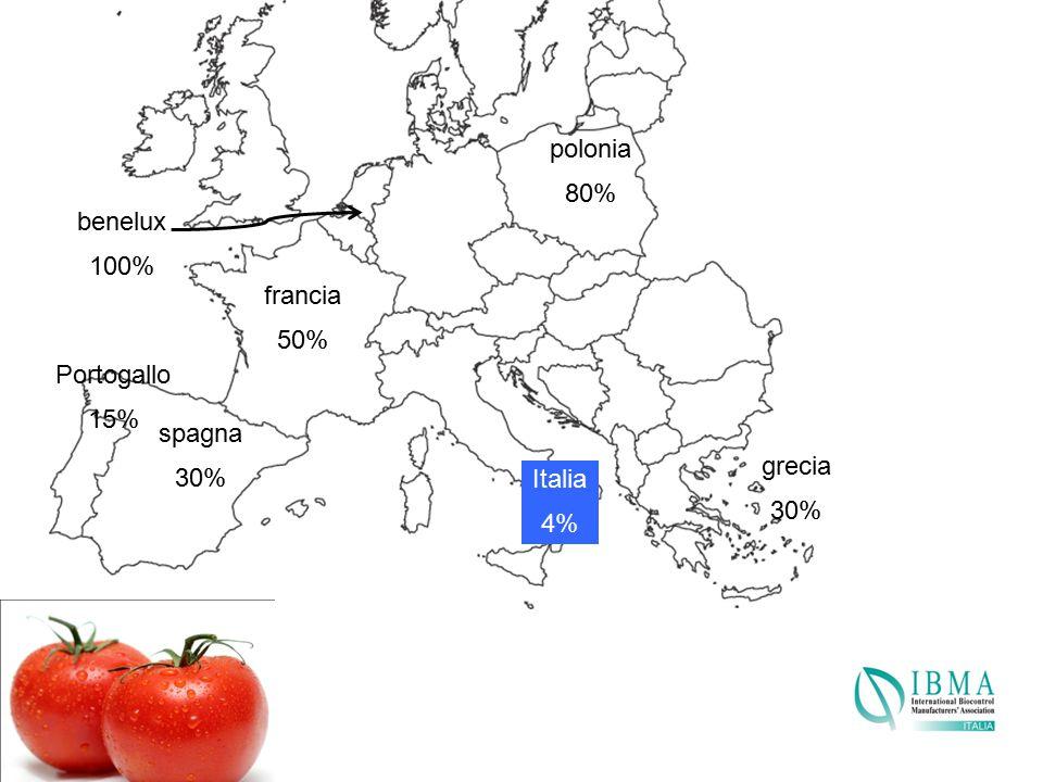 polonia 80% benelux 100% francia 50% Portogallo 15% spagna 30% grecia 30% Italia 4%