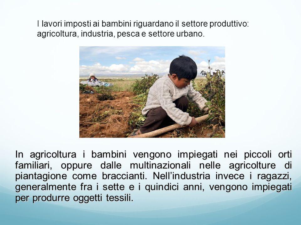 I lavori imposti ai bambini riguardano il settore produttivo: