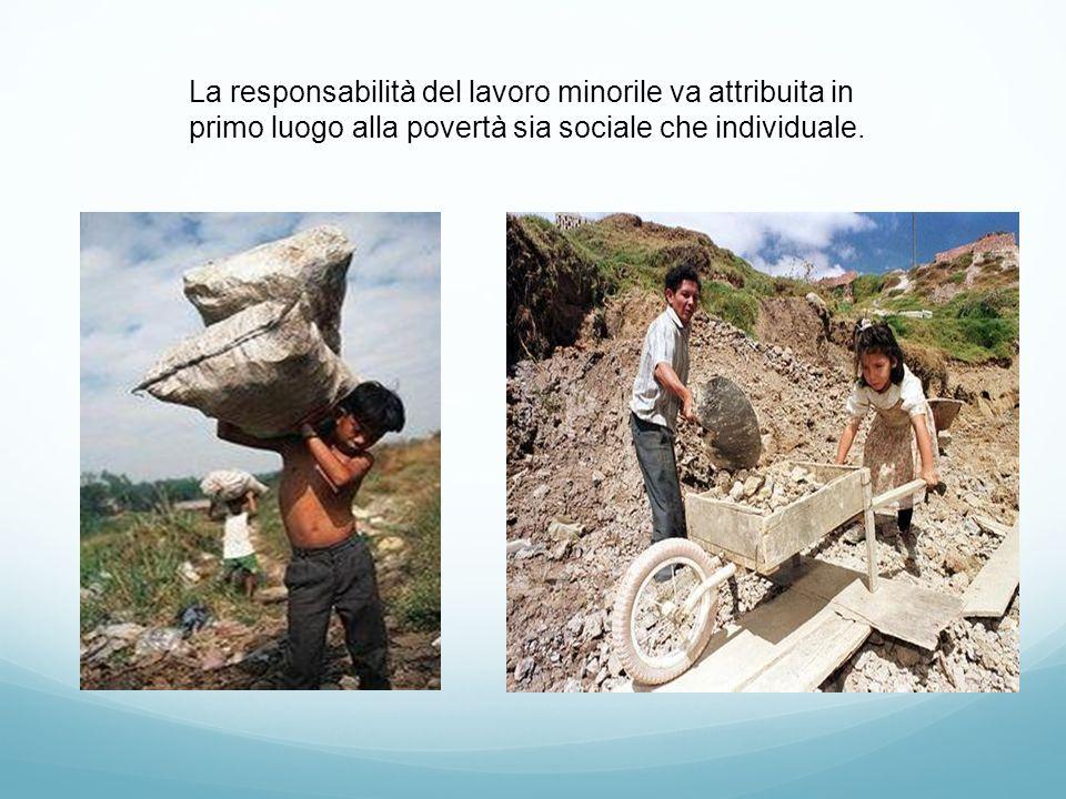 La responsabilità del lavoro minorile va attribuita in