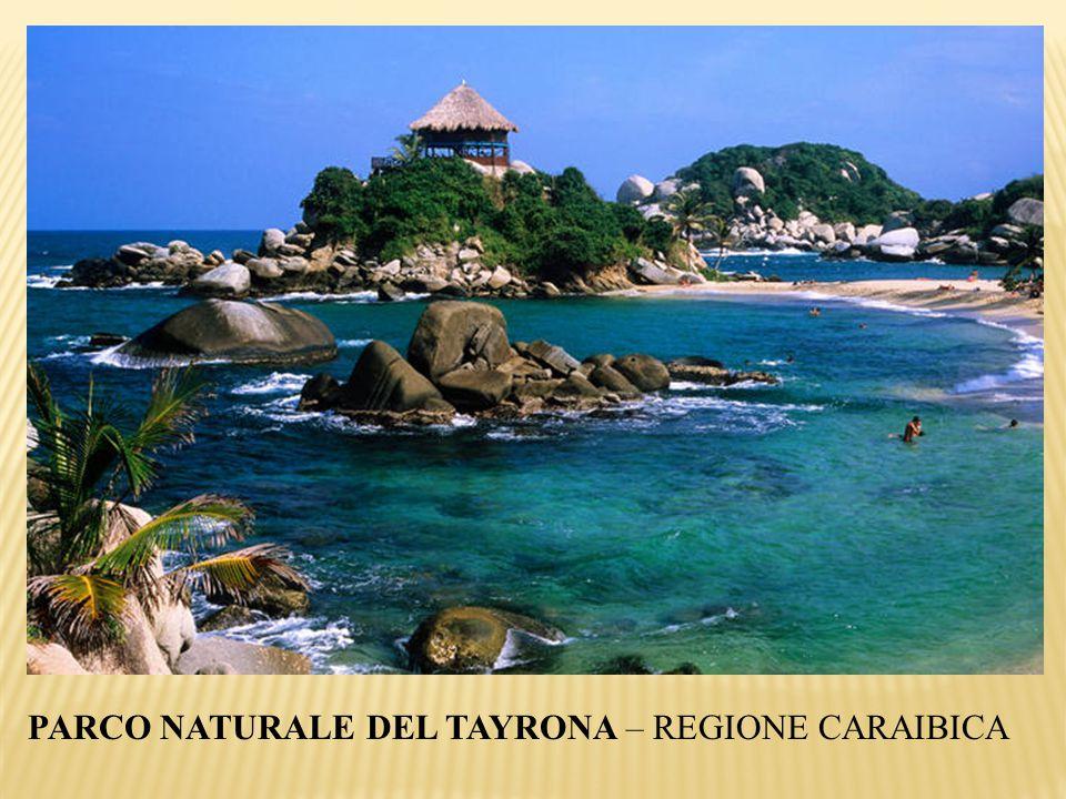 PARCO NATURALE DEL TAYRONA – REGIONE CARAIBICA