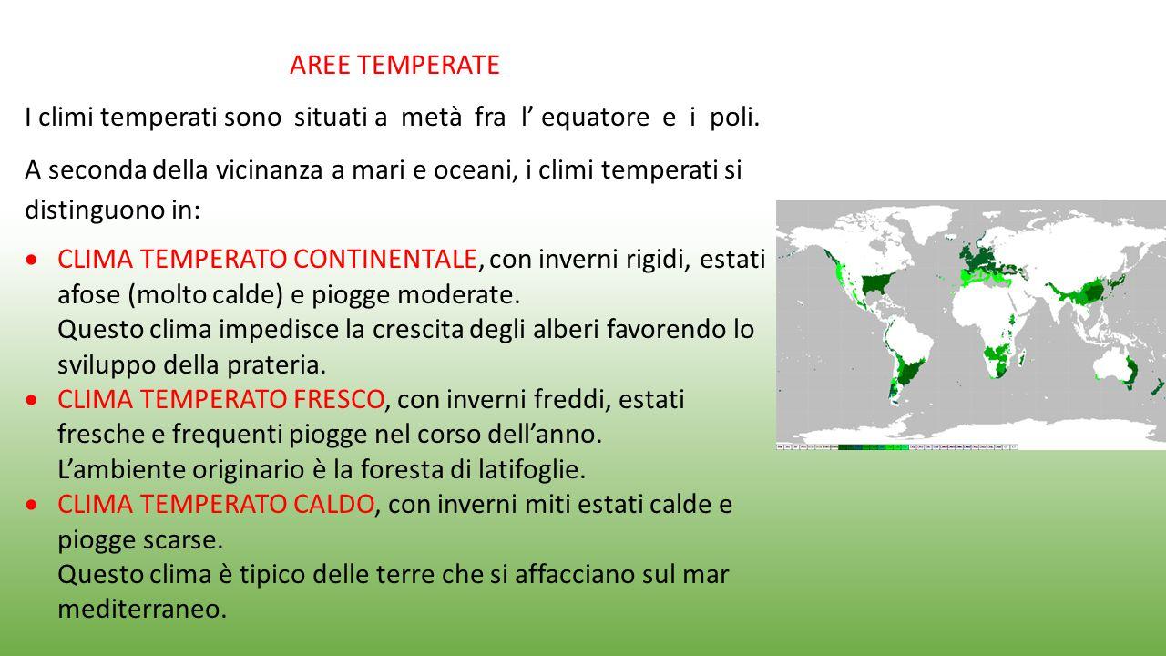 I climi temperati sono situati a metà fra l' equatore e i poli.