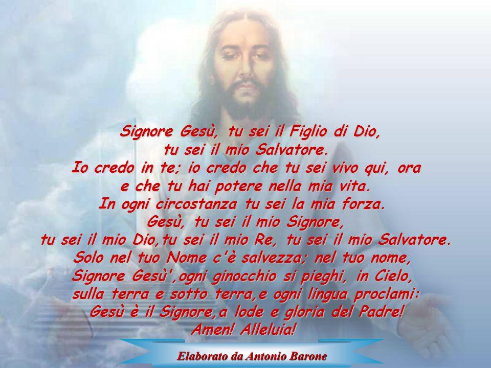 Signore Gesù, tu sei il Figlio di Dio,