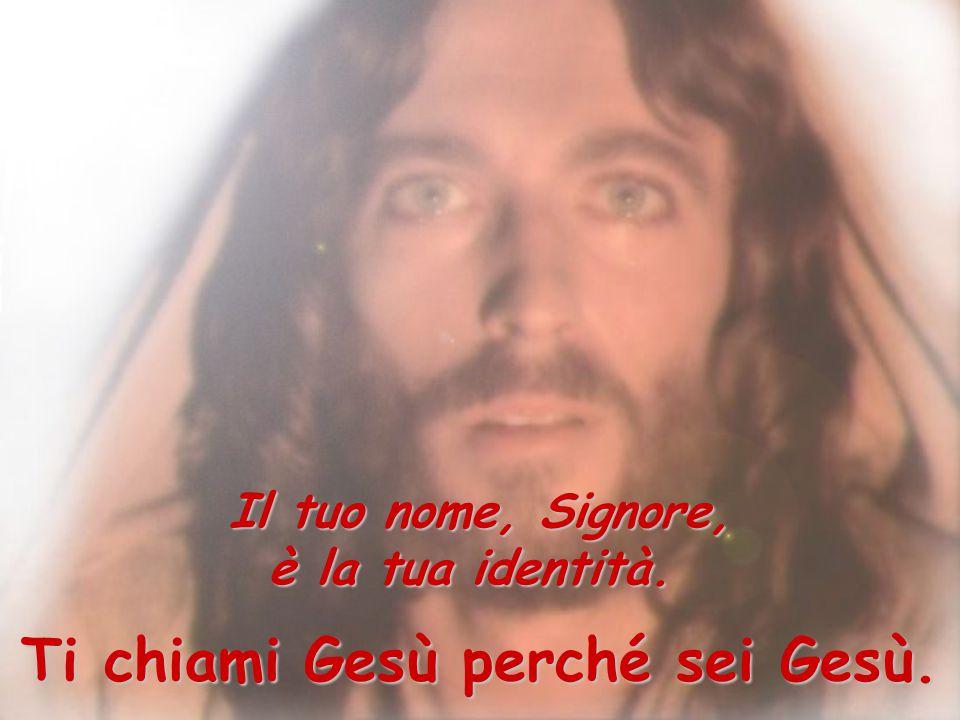 Ti chiami Gesù perché sei Gesù.