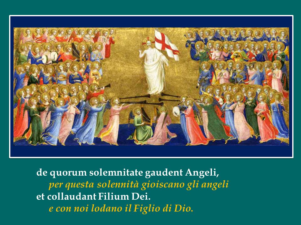 de quorum solemnitate gaudent Angeli,