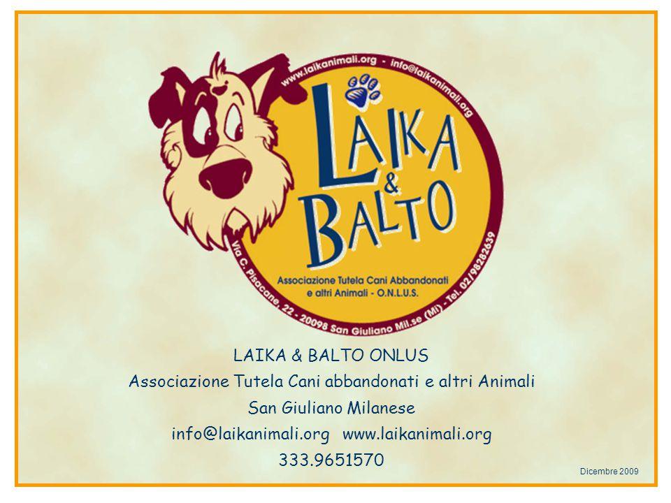 Associazione Tutela Cani abbandonati e altri Animali