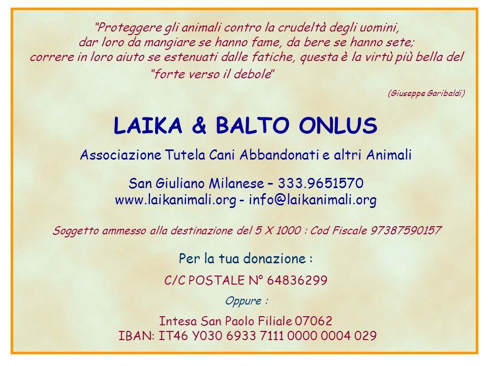 LAIKA & BALTO ONLUS (Giuseppe Garibaldi)
