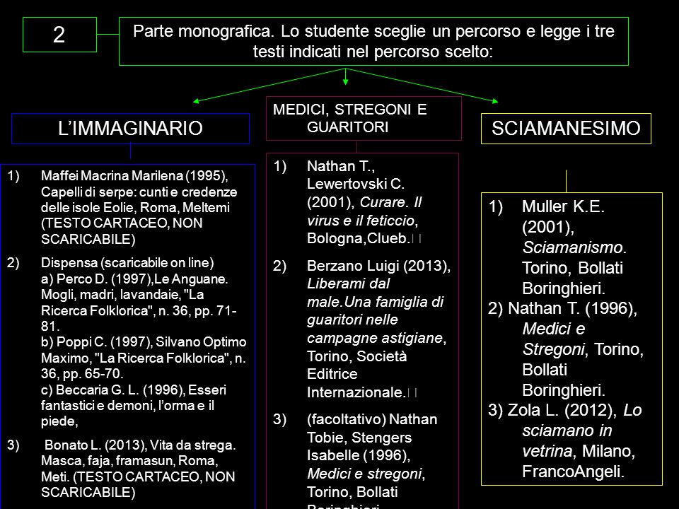 2 L'IMMAGINARIO SCIAMANESIMO