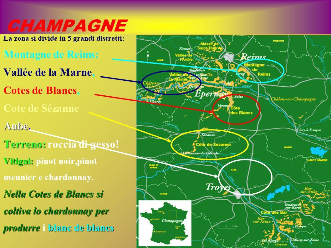 CHAMPAGNE Montagne de Reims: Vallée de la Marne, Cotes de Blancs,