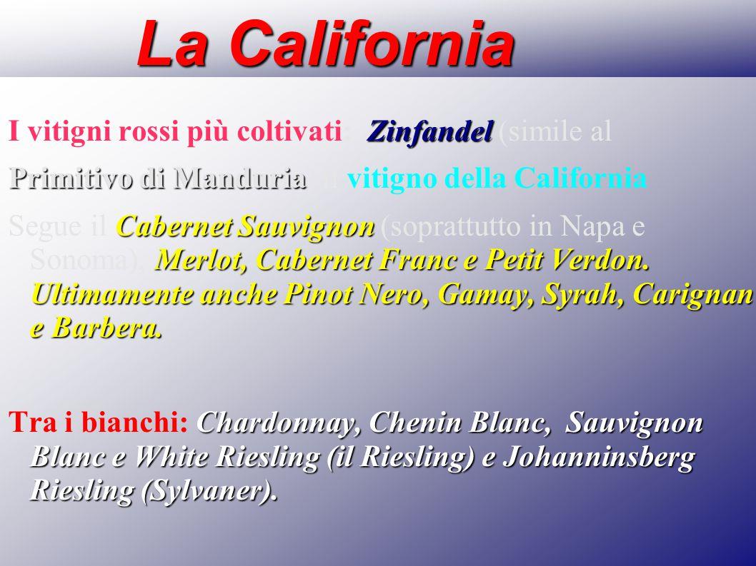 La California I vitigni rossi più coltivati: Zinfandel (simile al