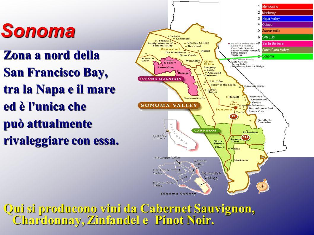 Sonoma Zona a nord della San Francisco Bay, tra la Napa e il mare