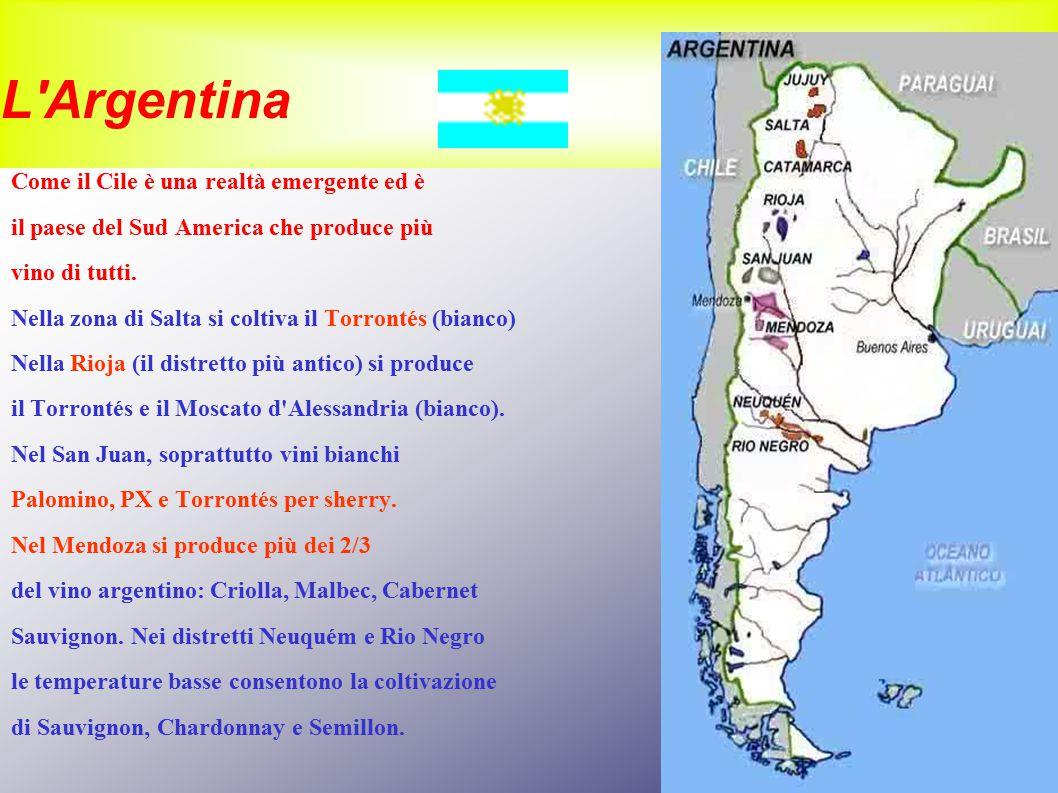 L Argentina Come il Cile è una realtà emergente ed è