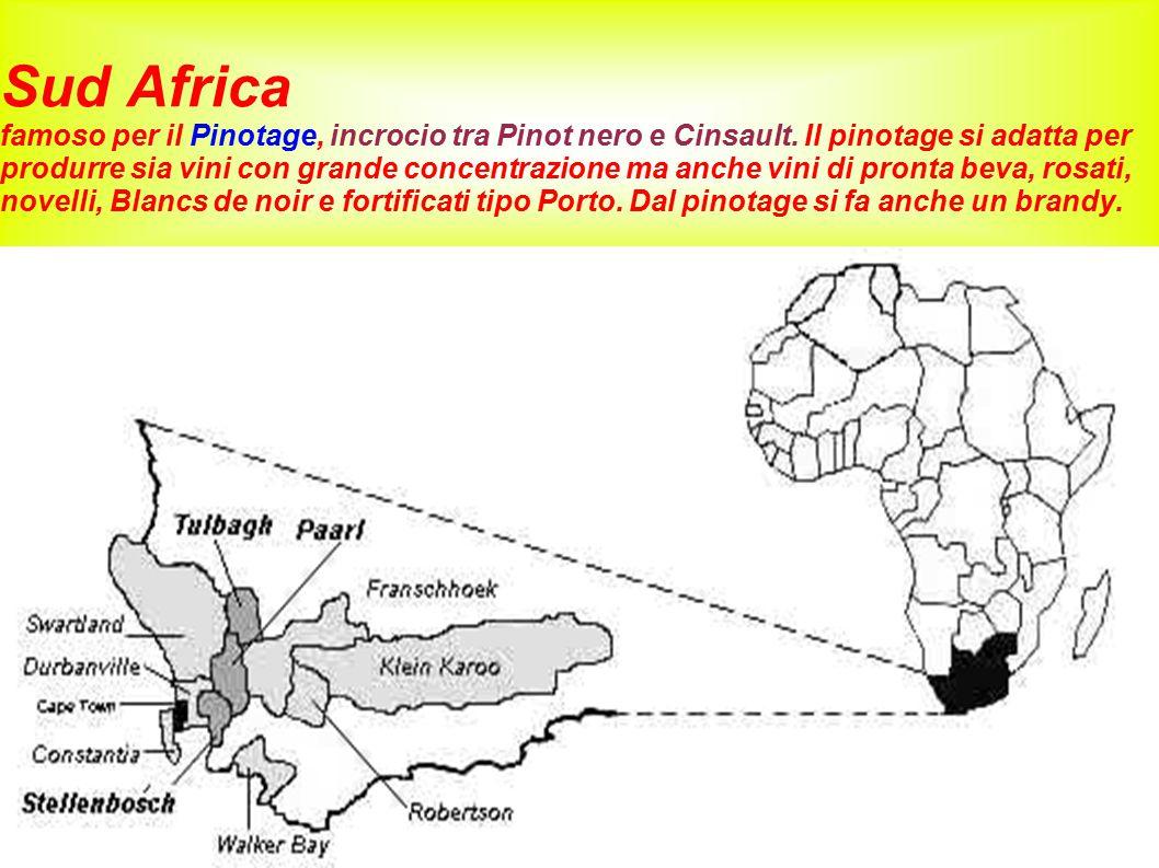Sud Africa famoso per il Pinotage, incrocio tra Pinot nero e Cinsault
