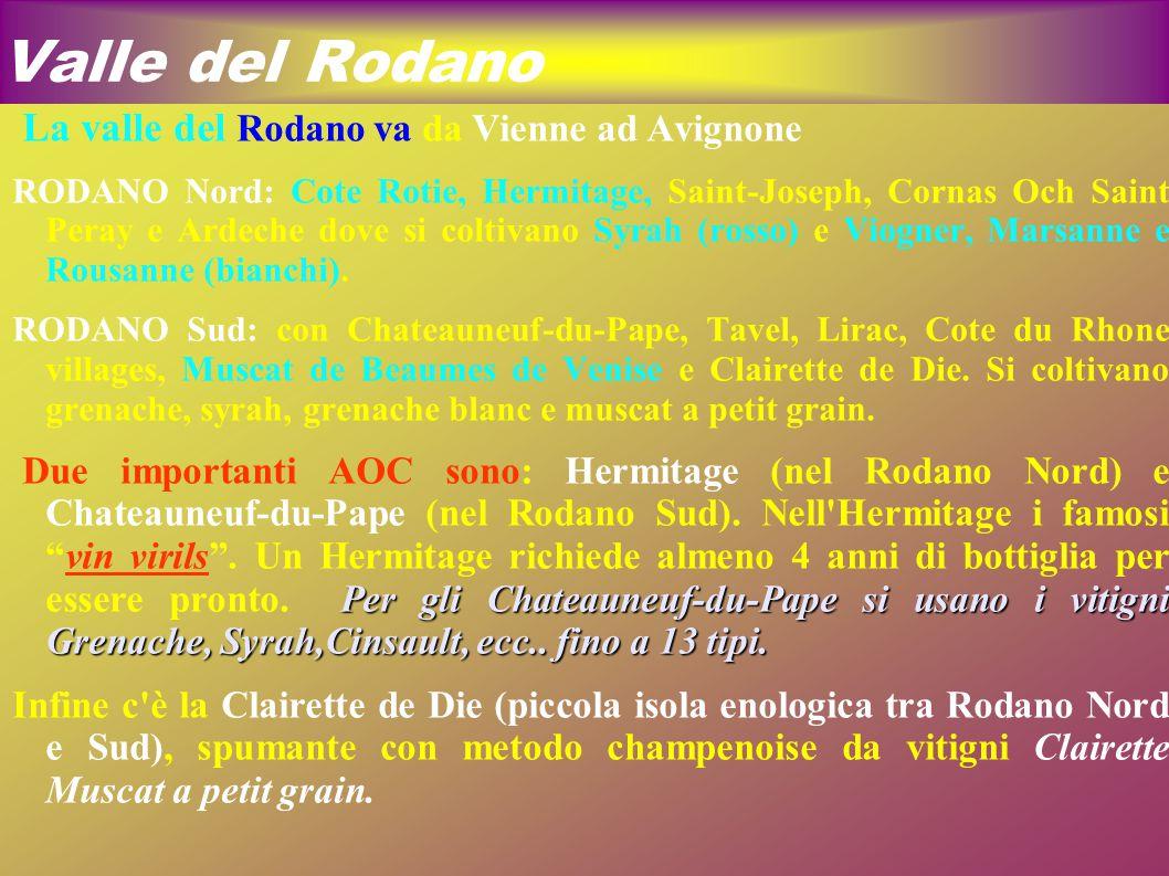 Valle del Rodano La valle del Rodano va da Vienne ad Avignone