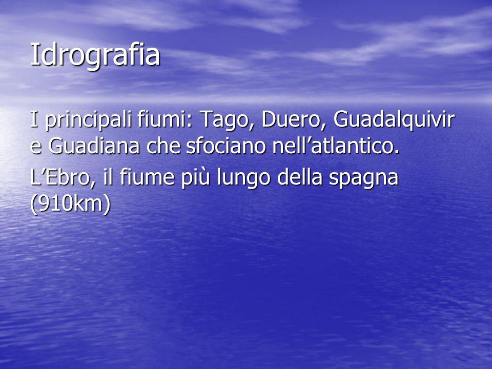Idrografia I principali fiumi: Tago, Duero, Guadalquivir e Guadiana che sfociano nell'atlantico.