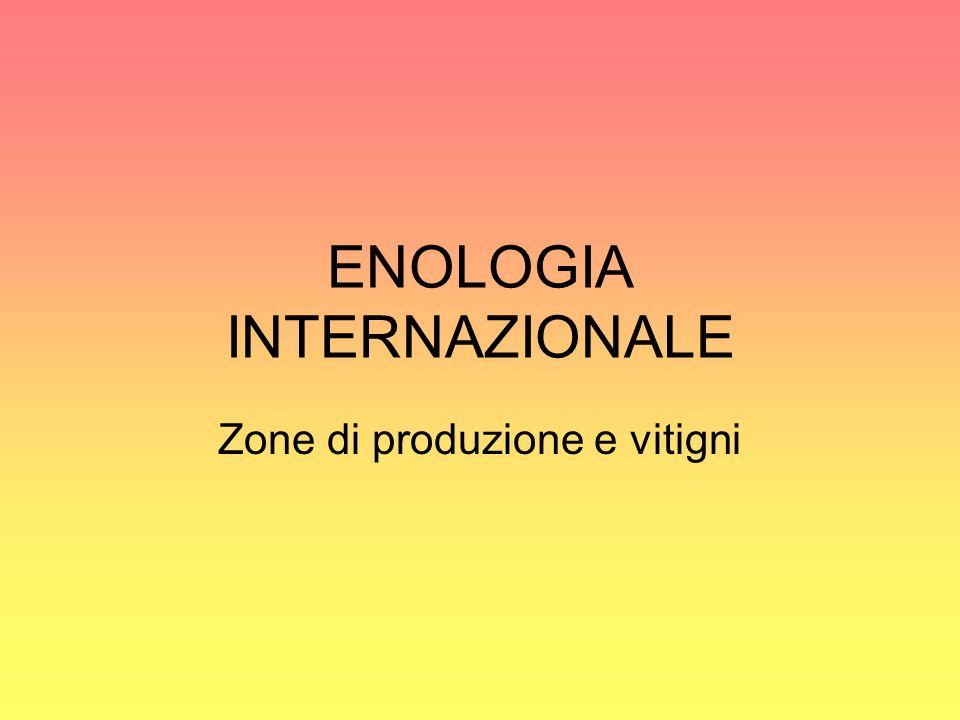 ENOLOGIA INTERNAZIONALE
