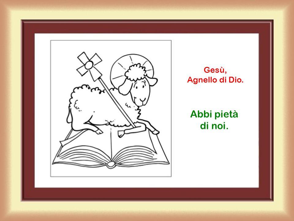 Gesù, Agnello di Dio. Abbi pietà di noi.