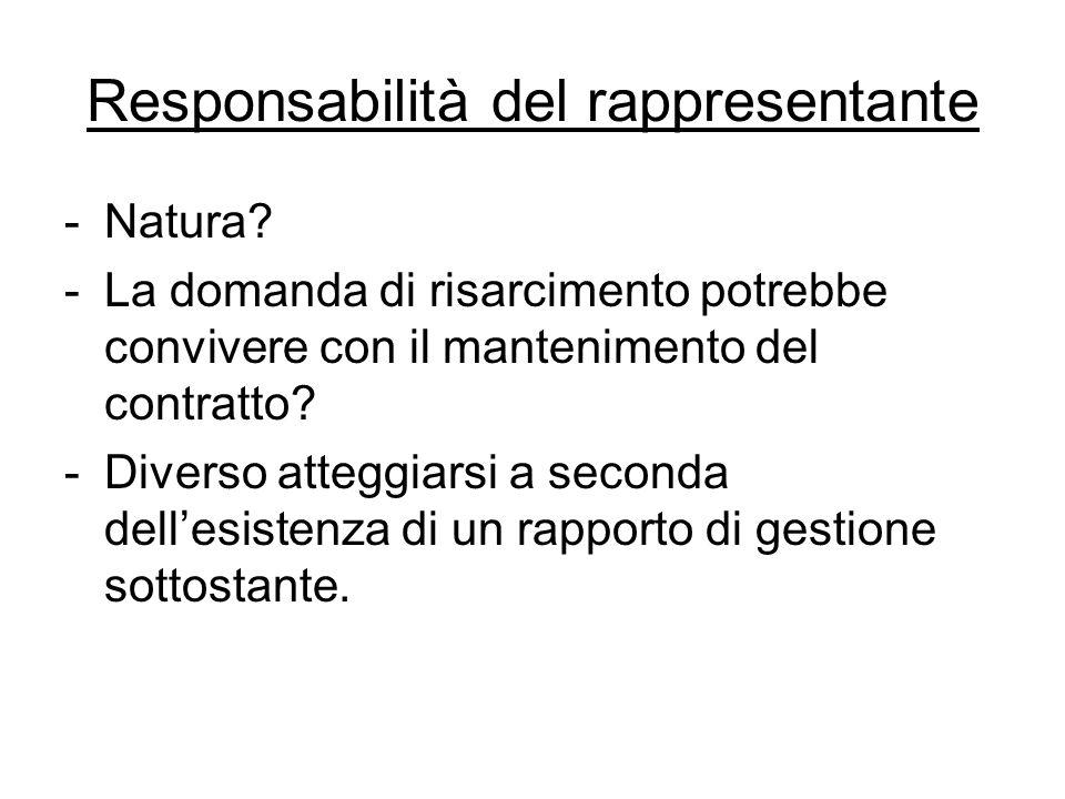 Responsabilità del rappresentante