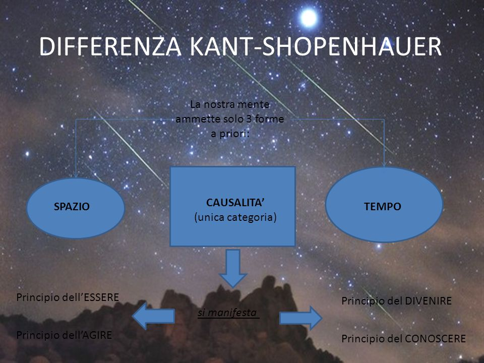 DIFFERENZA KANT-SHOPENHAUER