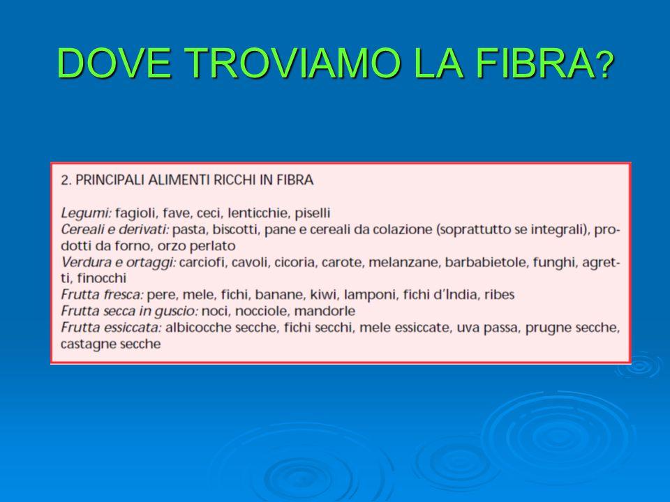 DOVE TROVIAMO LA FIBRA