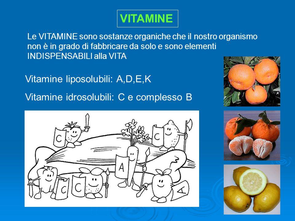 VITAMINE Vitamine liposolubili: A,D,E,K