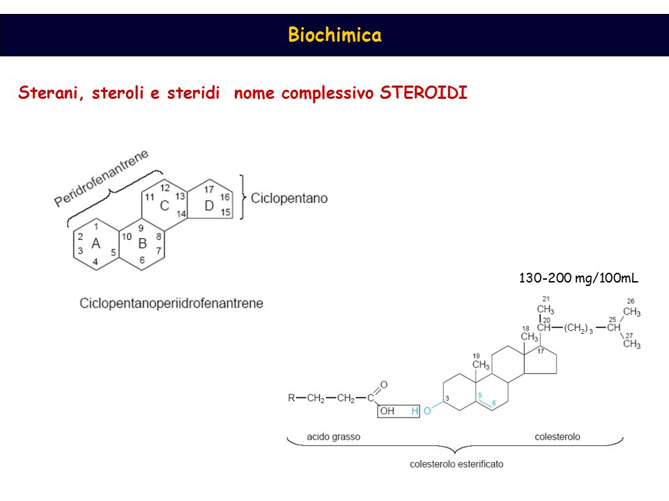 Sterani, steroli e steridi nome complessivo STEROIDI