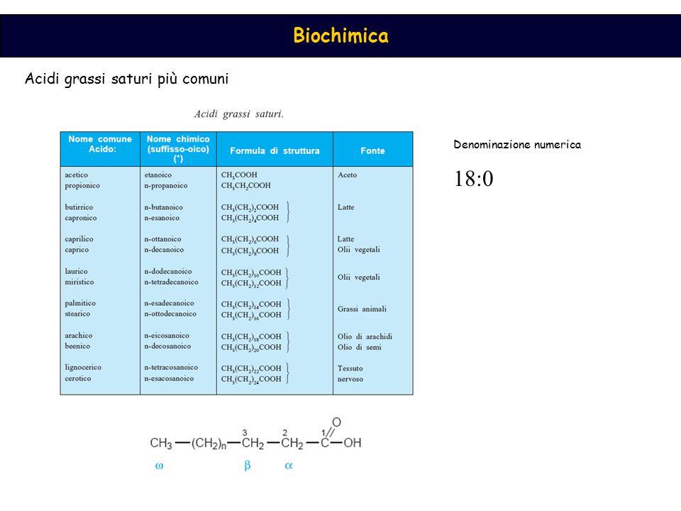 Acidi grassi saturi più comuni