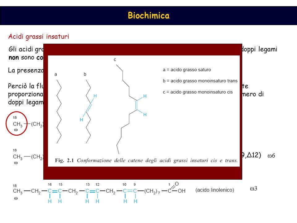 Acidi grassi insaturi Gli acidi grassi naturali sono preferenzialmente nella configurazione cis, e i doppi legami non sono coniugati.
