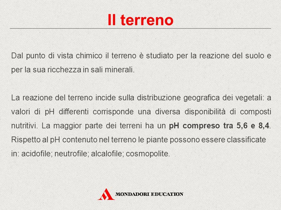 Il terreno Dal punto di vista chimico il terreno è studiato per la reazione del suolo e per la sua ricchezza in sali minerali.