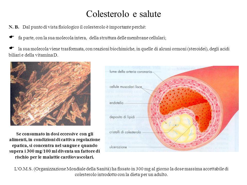 Colesterolo e salute N. B. Dal punto di vista fisiologico il colesterolo è importante perché: