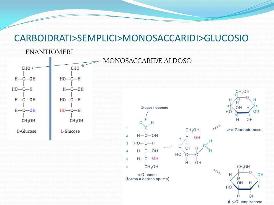 CARBOIDRATI>SEMPLICI>MONOSACCARIDI>GLUCOSIO