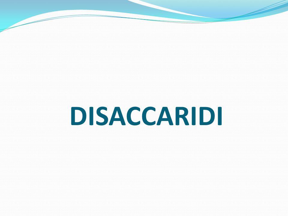 DISACCARIDI