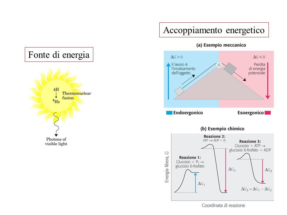Accoppiamento energetico