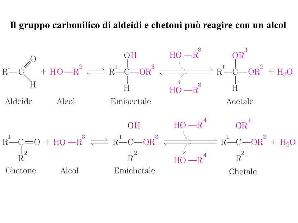 Il gruppo carbonilico di aldeidi e chetoni può reagire con un alcol