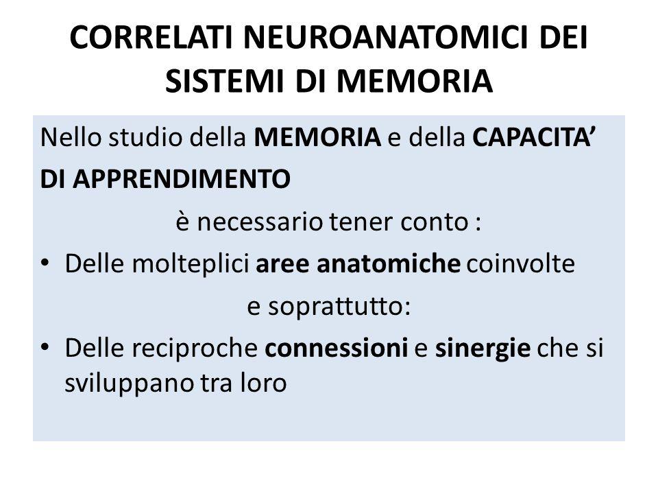 CORRELATI NEUROANATOMICI DEI SISTEMI DI MEMORIA