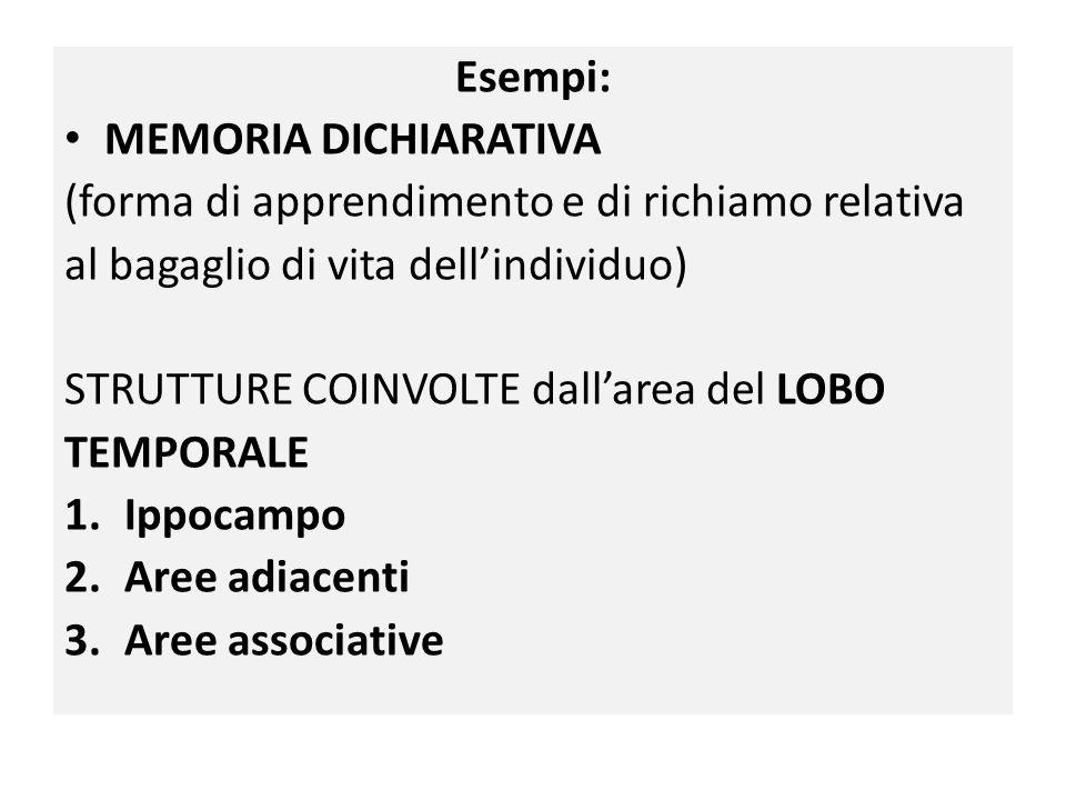 Esempi: MEMORIA DICHIARATIVA. (forma di apprendimento e di richiamo relativa. al bagaglio di vita dell'individuo)