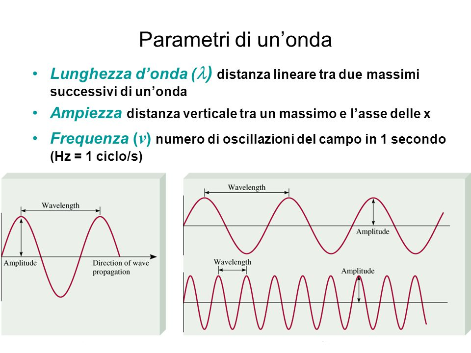 Parametri di un'onda Lunghezza d'onda (l) distanza lineare tra due massimi successivi di un'onda.