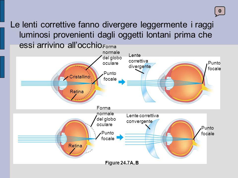Le lenti correttive fanno divergere leggermente i raggi luminosi provenienti dagli oggetti lontani prima che essi arrivino all'occhio.