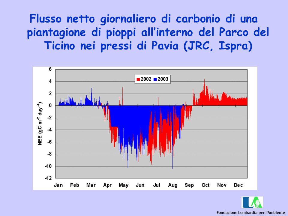 Flusso netto giornaliero di carbonio di una piantagione di pioppi all'interno del Parco del Ticino nei pressi di Pavia (JRC, Ispra)