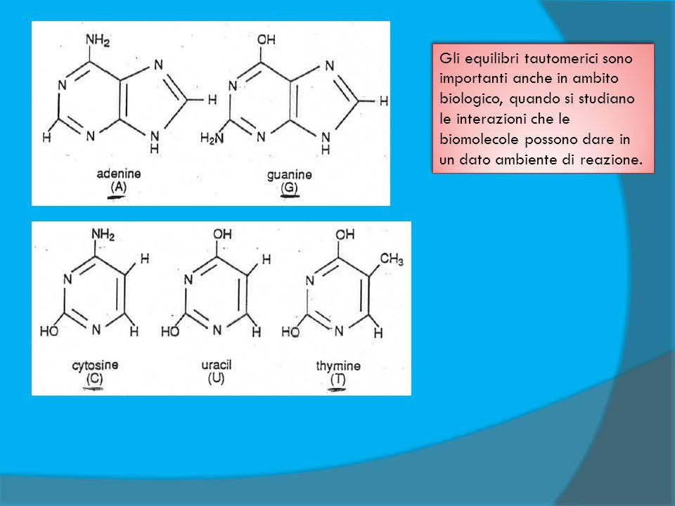Gli equilibri tautomerici sono importanti anche in ambito biologico, quando si studiano le interazioni che le biomolecole possono dare in un dato ambiente di reazione.