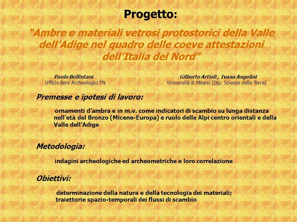 Progetto: Premesse e ipotesi di lavoro: Metodologia: Obiettivi: