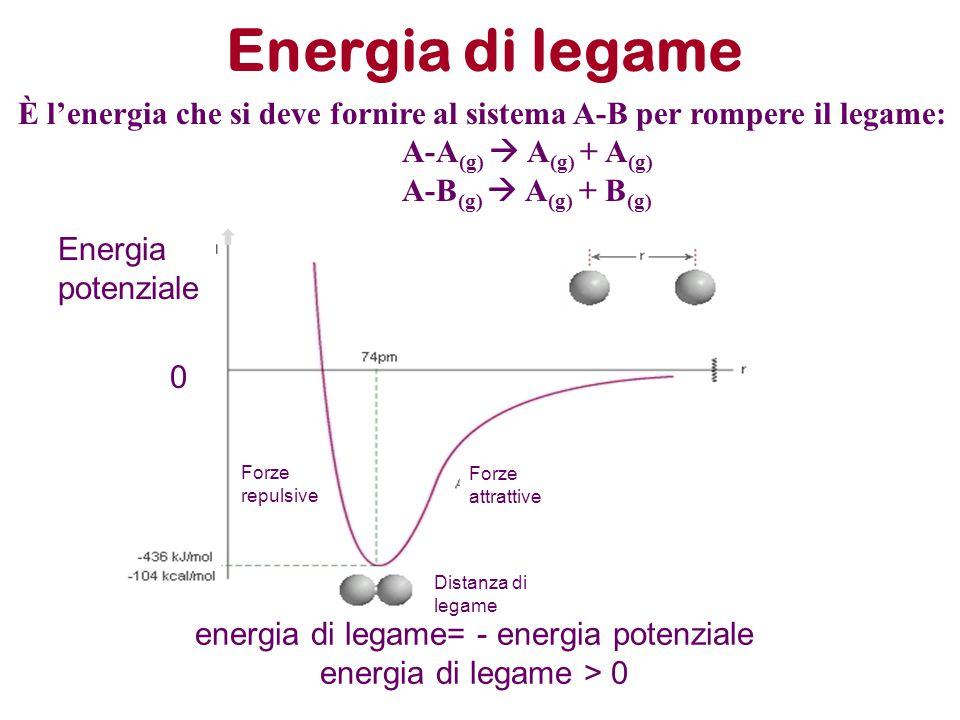 energia di legame= - energia potenziale