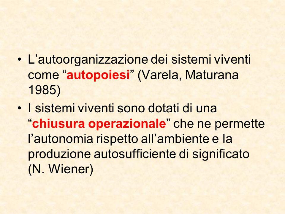 L'autoorganizzazione dei sistemi viventi come autopoiesi (Varela, Maturana 1985)