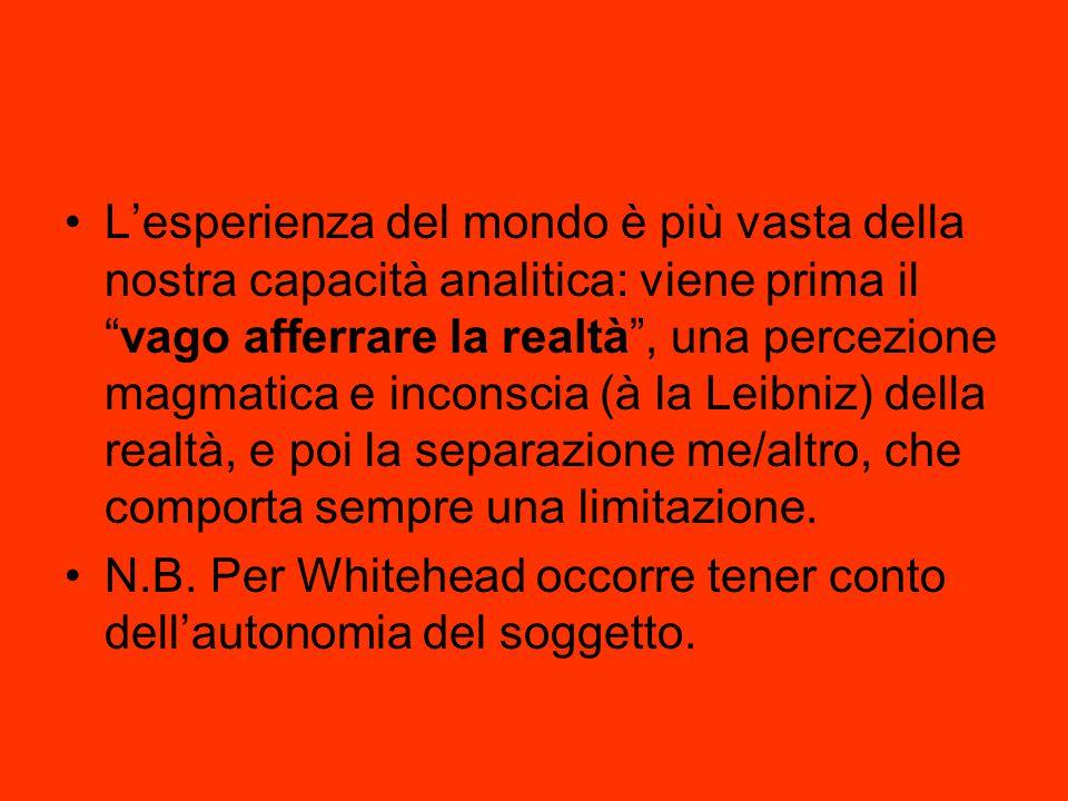 L'esperienza del mondo è più vasta della nostra capacità analitica: viene prima il vago afferrare la realtà , una percezione magmatica e inconscia (à la Leibniz) della realtà, e poi la separazione me/altro, che comporta sempre una limitazione.