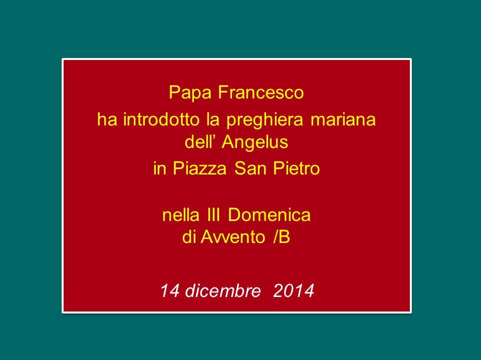 Papa Francesco ha introdotto la preghiera mariana dell' Angelus in Piazza San Pietro nella III Domenica di Avvento /B 14 dicembre 2014